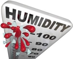 100 percent humidity