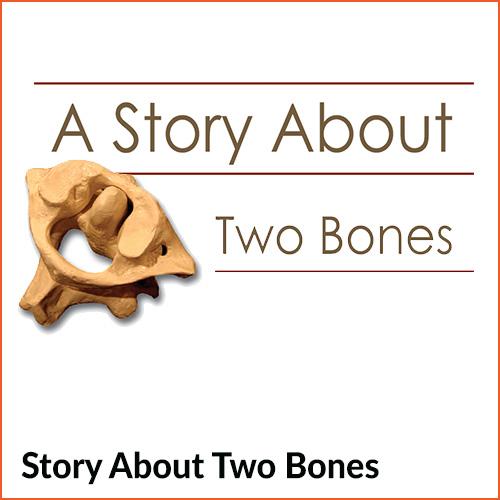 2 bone story campaign